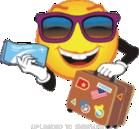 holiday-ticket-smiley-emoticon