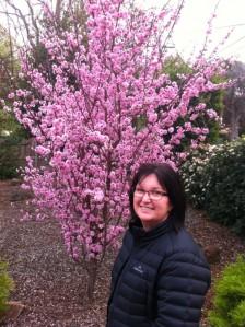 Blossom 2015